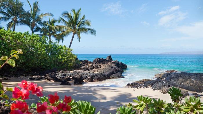do you need a passport when traveling to hawaii?