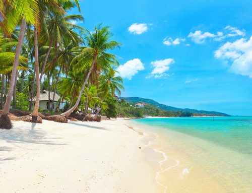 5 More great things to do and see in Koh Samui, Thailand