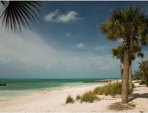 See, Stay, and Play in the Florida Keys
